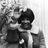 13. Dezember 2018: Nancy Wilson (81 Jahre)  Nancy Wilson ist eine US-amerikanische Jazz-Sängerin und mehrfache Grammy-Preisträgerin gewesen. Insgesamt hat sie 34 Alben in den amerikanischen Alben-Charts platzieren können. Laut ihrer Managerin Devra Hallsoll sie in ihrem Haus in der kalifornischen Gemeinde Pioneertown in der Nähe des Joshua Tree Nationalparks gestorben sein.