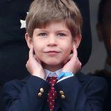 Lady Louises Bruder James, Viscount Severn wird im Dezember 2007 geboren.