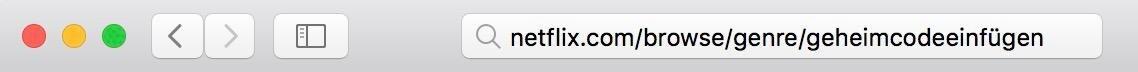 Netflix-Geheimcodes benutzen