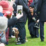 Als großer Hundefan begrüßt Herzogin Meghan ihre tierischen Fans natürlich besonders gerne.