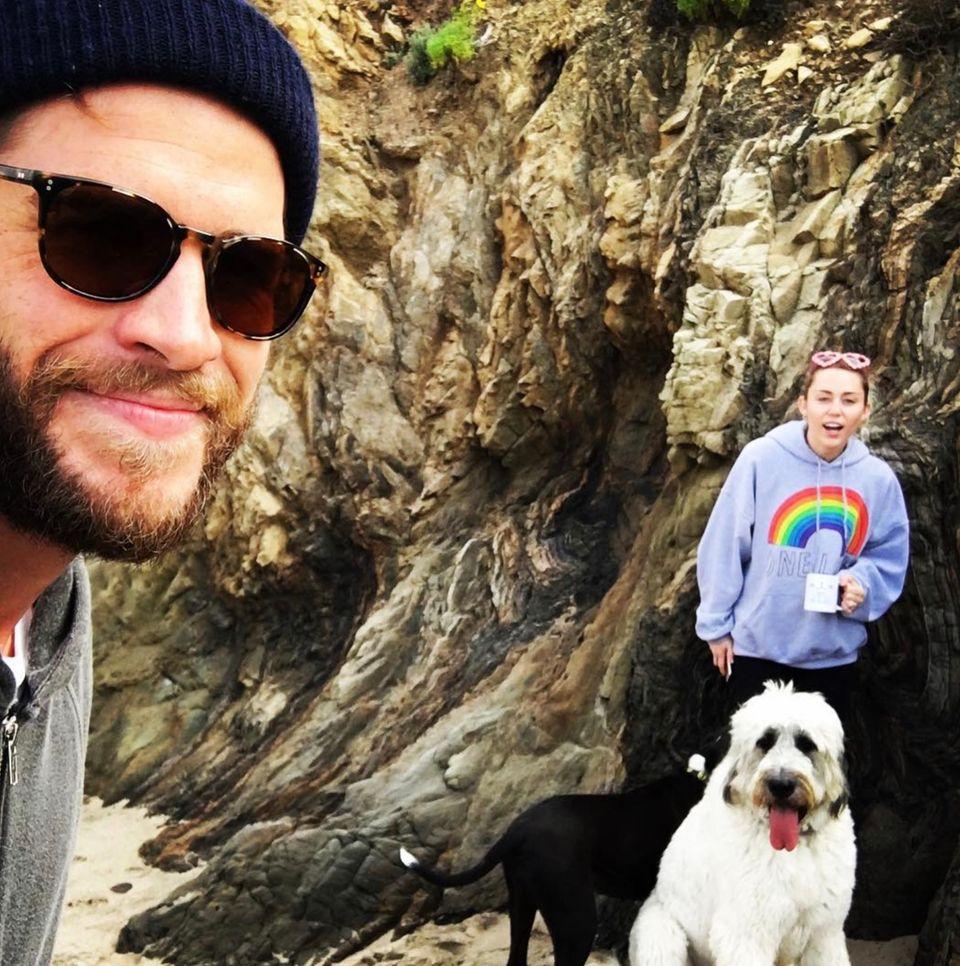 Februar 2017  Am Valentinstag macht das Paar mit seinen Hunden einen Ausflug in die Natur.