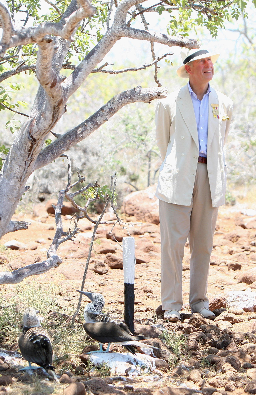 Prinz Charles gilt als großer Naturfreund und Umweltaktivist.