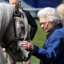 Queen Elizabeth muss Abschied von einem ihrer Pferde nehmen.