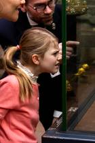 8. Januar 2019  Schatzkammerbesuch im Schwedischen Hof: Höchst konzentriert – vielleicht auch etwas kritisch – schaut sich Prinzessin Estelle die Kronen ihrer eigenen Familie an ...