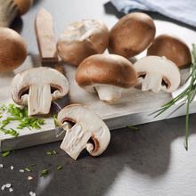 Vitamin-D-Pilze von Kaufland
