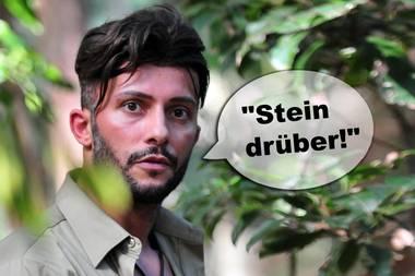 Dschungelcamp 2019: Die lustigsten Sprüche