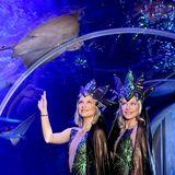 """21. Januar 2019  Valentina und Cheyenne Pahde stehen in aufwendigen Glitzer-Kostümen im Sea Life Berlin. Die Zwillinge machen hier Werbung für ihren Gastauftritt bei der Holiday on Ice Show """"Atlantis""""."""