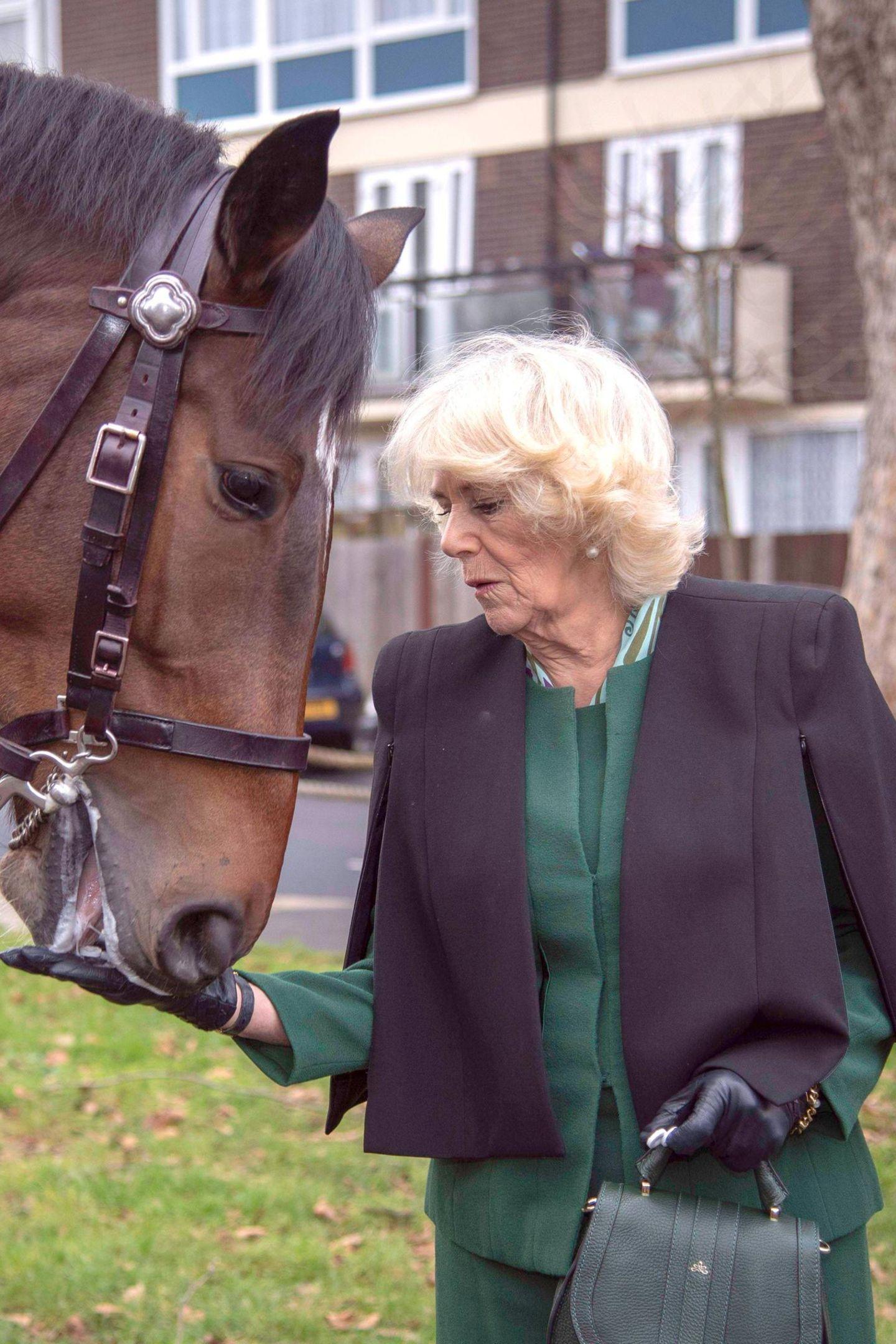 Camilla legt das gute Stück, das für 375 Euro zu haben ist, auch nicht ab, als sie ein Pferd füttert. Ob sie die Tasche besonders gut beaufsichtigen muss?