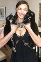 Für ein Beauty-Shooting bekommt Topmodel Irina Shayk tierische Unterstützung von diesen beiden süßen Welpen, die auf die NamenKolizey und Glinka hören. Niedlicher hätte sie ihr auch nicht zu verachtendes Dekolleté wohl nicht einrahmen können.