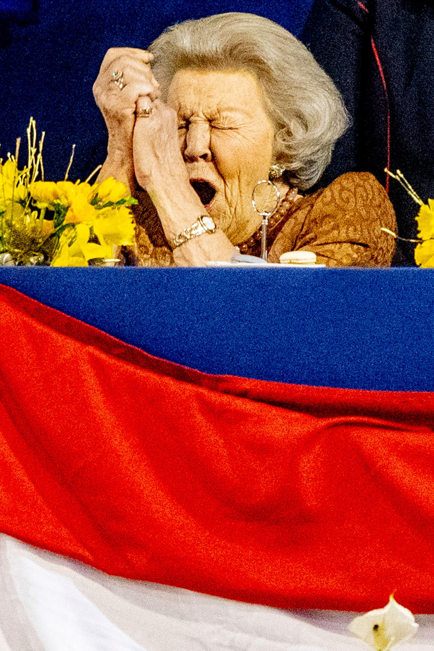 Für Prinzessin Beatrix gibt es nun kein Halten mehr und wir freuen uns über diesen herrlichen, royalen Gefühlsausbruch.