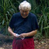 Tommi Piper hat gut lachen: Im Camp blüht er auf und erlebt eine aufregende Zeit. Doch die eintönigen Mahlzeiten mit Bohnen und Reis lassen auch seine Kilos purzeln ...