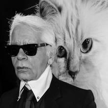 Karl Lagerfeld vergötterte seine Katze.