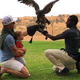 19. Februar 2019  Klein Cooper bestaunt den großen Raubvogel ganz tapfer, schließlich ist er ja auch gut geschützt im Arm seines Vater Ronan Keating.