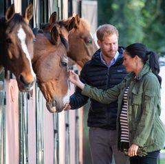 Die Sussex' zeigen sich tierlieb und streicheln die Pferde, die neugierig ihre Köpfe aus ihren Boxen strecken. Ein Detail des Bildes macht aber stutzig: Herzogin Meghan hält farblich passende Handschuhe in der linken Hand. Warum sie diese dabei hat, ist unklar.