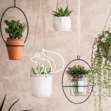 Für das Raumklima: Diese fünf Pflanzen verbessern die Luft in Ihrer Wohnung