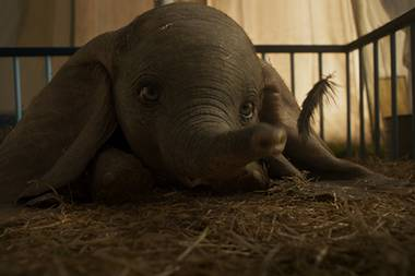 Disneys Dumbo