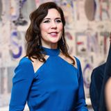 Im Rahmen eines Galadinners im Museum of Fine Arts in Texas bezaubert Mary in einer royalblauen Robe.