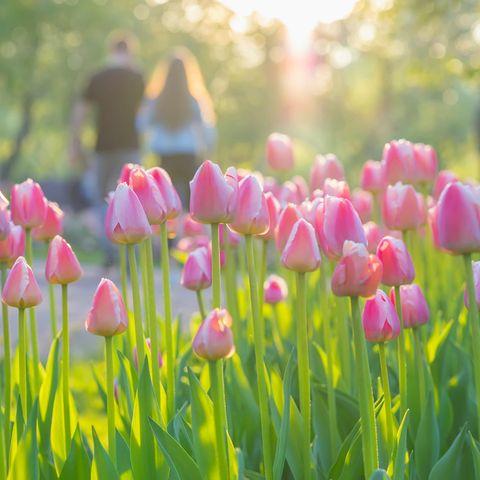 Wir warten gespannt auf den Frühling