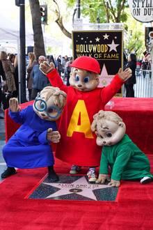 """14. März 2019  Das sieht man auch nicht alle Tage: Heute wird auf dem berühmten Walk of Fame kein Hollywood-Schauspieler geehrt, sondern die berühmtesten Streifenhörnchen. """"Alvin und die Chipmunks"""" gibt es nun schon seit 60 Jahren und das muss natürlich gefeiert werden."""