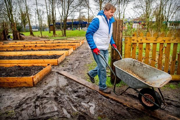 """Ohne Königin Máxima beim """"NL Doet"""": König Willem-Alexander packt am Freiwilligentag mit an und hilft, einen Märchengarten in einem Streichelzoo zu bauen."""