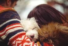 Wie bitte?!: Hat die Liebe zu unseren Haustieren negative Auswirkungen auf sie?