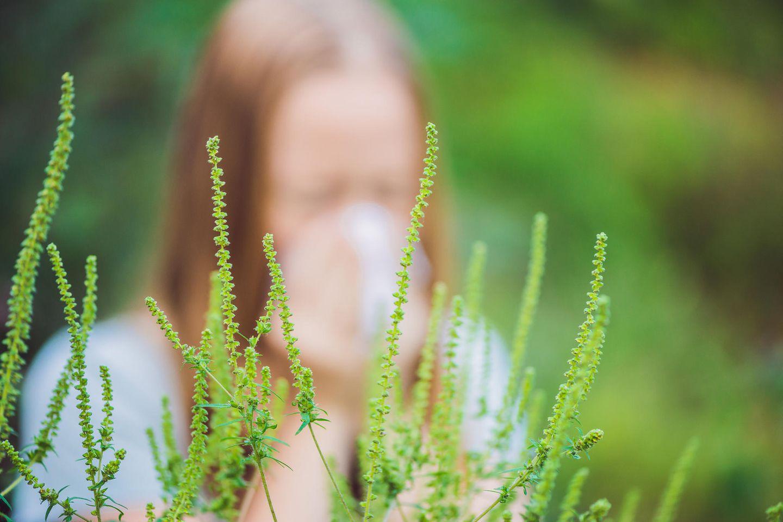 Verursacher von Heuschnupfen istPollen- bzw. Blütenstaub