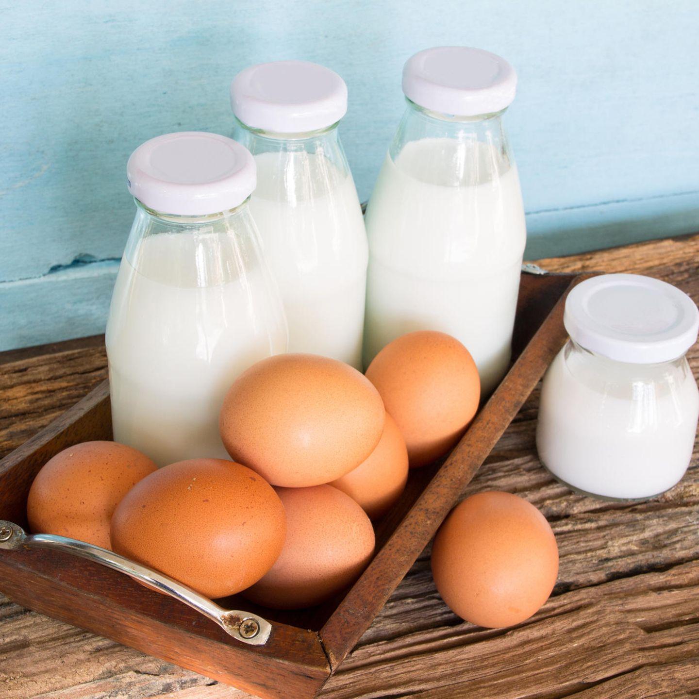 Nahrungsmittel wie Milch und Eier sind mögliche Allergene