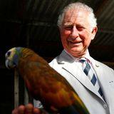 Prinz Charles schließt Bekanntschaft mit einem farbenfrohenPapagei.