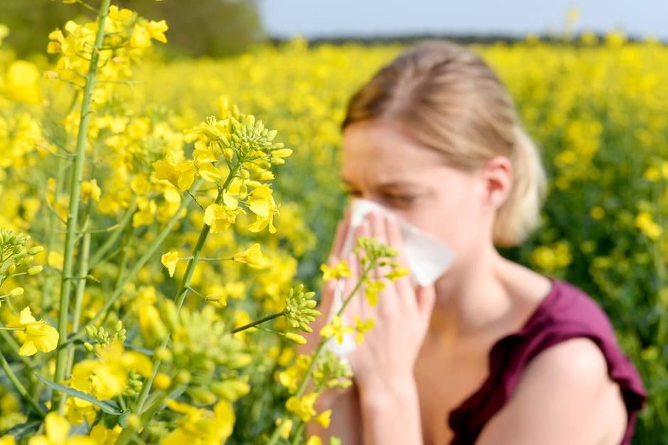 Behandlung von Allergien: So helfen Antihistaminika