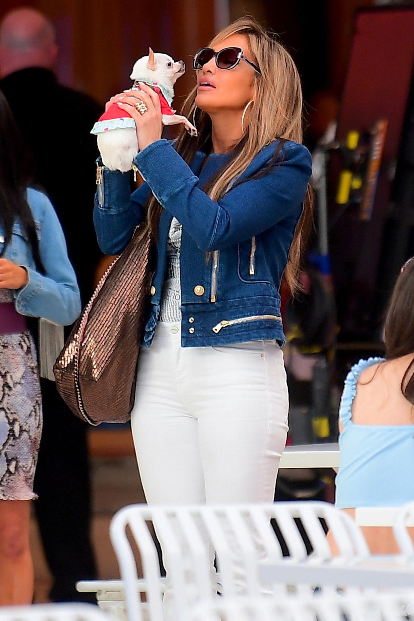 """Die Dreharbeiten zu """"Hustlers"""" haben begonnen: In dem Film schlüpft Jennifer Lopez in die Rolle einer Ex-Stripperin. Der Film basiert auf einer wahren Geschichte, die von einer Gruppe ehemaliger Stripperinnen in New York erzählt. Sie hecken eine Plan aus, um ihren reichen Wall-Street-Kunden das Geld aus der Tasche zu ziehen.  In dieser Szene gibt es von der Schauspielerin Küsschen für einenChihuahua."""