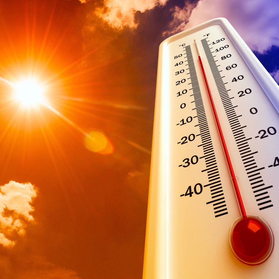 Wie wird das Wetter im Sommer 2019?