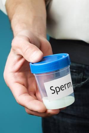 Korrekterweise müsste die Sperma-Allergie alsSeminalplasma-Allergie bezeichnet werden.