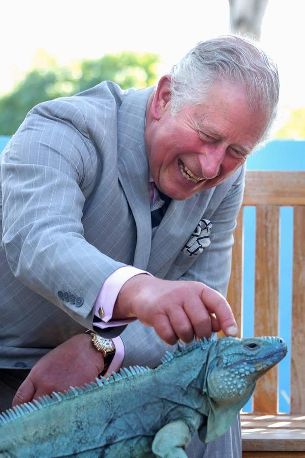 Prinz Charles, Karibik