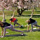 Beim Outdoor-Yoga mit Lehrerin Gabriela Bozic tanken die Gäste (in OGNX) inmitten von blühenden Magnolien-Bäumen Kraft.