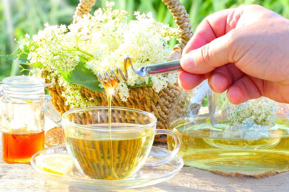 Holunderblüten-Honig-Sirup kann Heiserkeit lindern