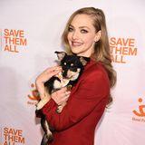 Amanda Seyfrieds flauschiges Accessoire für das Charity-Event vonBest Friends Animal Society könnte passender nicht sein: Die Schauspielerin sowieviele andere Promis spenden an dem Abend für den US-amerikanischen Tierschutzverein, der sich gegen das Töten von Katzen und Hunden in US-amerikanischen Tierheimen einsetzt.