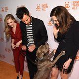 Auch Justin Theroux und Emmy Rossum erscheinen auf dem roten Teppich des Wohltätigkeits-Events. Das freuteinen Vierbeiner ganz besonders und springt kurzerhand an der hübschen Schauspielerin hoch, um eine Streicheleinheit abzuholen.