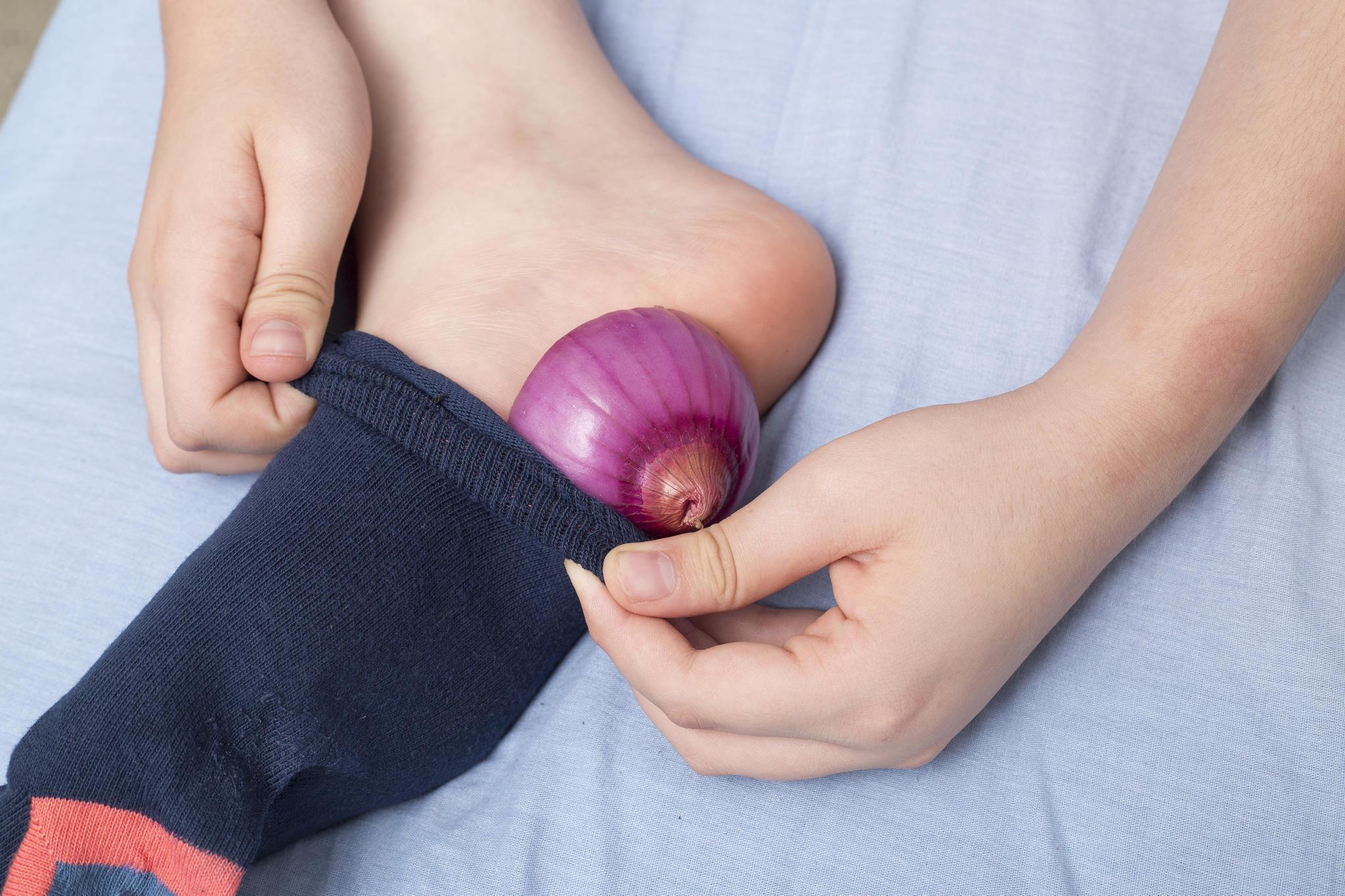 Zwiebeln sind äußerst wirksam bei der Behandlung von Zeckenbissen.