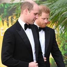 Prinz William + Prinz Harry