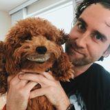 """2019  Nachwuchs ist zwar noch nicht auf dem Weg, dafür ist Matthew Lewis ein guter Hunde-Daddy. Auf Instagram zeigt er sich immer wieder mit seinen zwei Vierbeinern. Hier sieht man auch, dass er auch fleißig an neuen Projekten arbeitet. In Neuseeland dreht er aktuell """"Baby, Done""""."""
