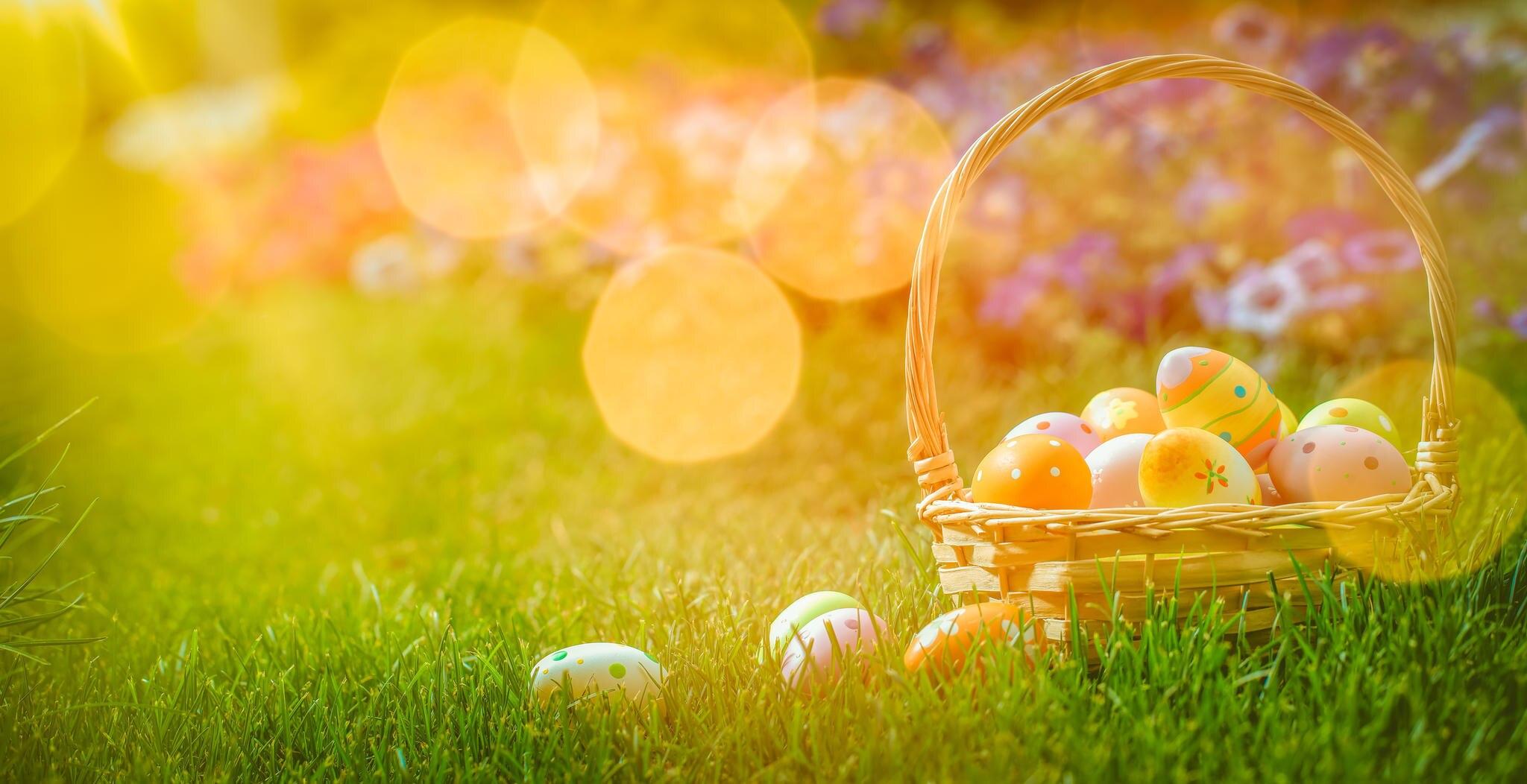 Zu Ostern kommt der Frühling zurück