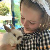 Victoria BeckhamsTochter Harper geht mit einer kleinen Fellnase – vielleicht sogar dem Osterhasen persönlich? – auf Kuschelkurs.