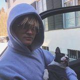 16. April 2019  Während Mama Mette-Marit und Stiefpapa Haakon im Ski-Urlaub sind, hütet der 22-Jährige Marius das Haus und passt auf Boston Terrier Louie auf. Seine Mama findet das super und kommentiert den Instagram-Schnappschuss ihres Sohnes – so läuft moderne Familien-Kommunikation ab!