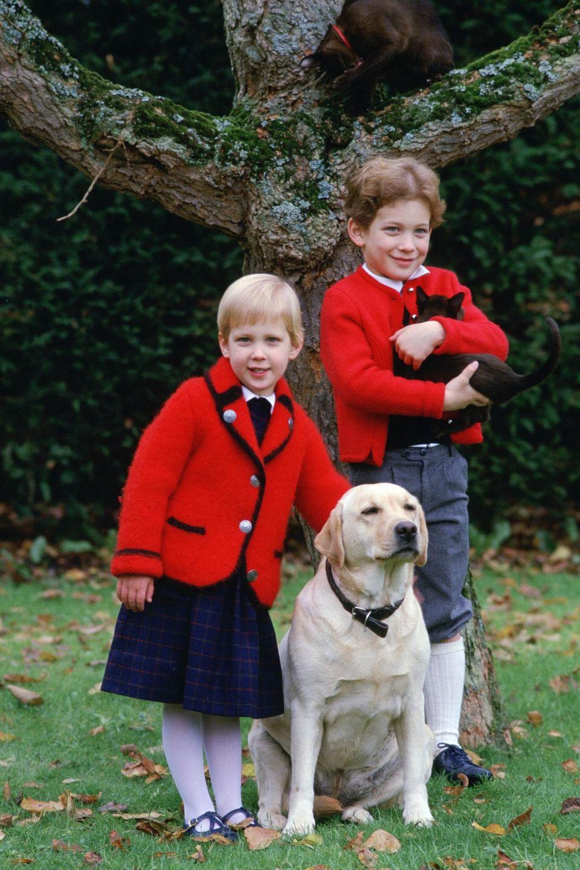 1984 posieren Lady Gabriella und Lord Frederick mit Familienhund und -katze für ein Foto im Garten.