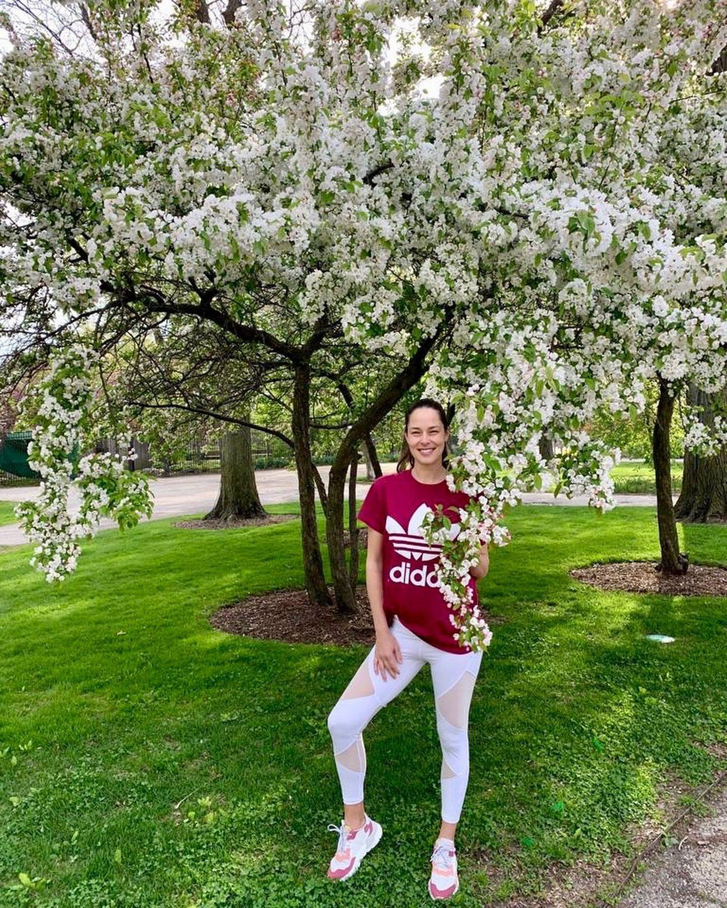 """In einer hellen Leggins mit Mesh-Einsätzen und einem roten Adidas-Shirt posiert Ana Ivanovic vor einem blühenden Baum. """"Der Frühling besucht uns in Chicago"""", schreibt sie zu dem Foto - und das sieht man!"""