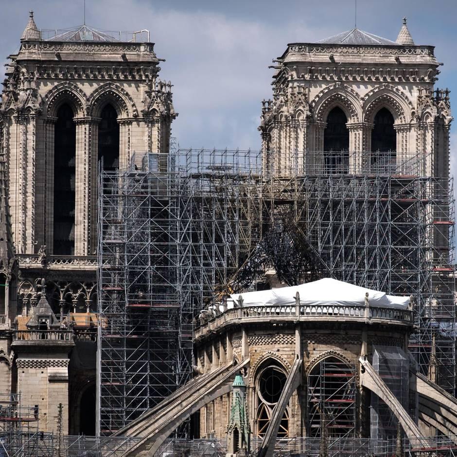 Bekommt Notre Dame bald einen Pool aufs Dach?