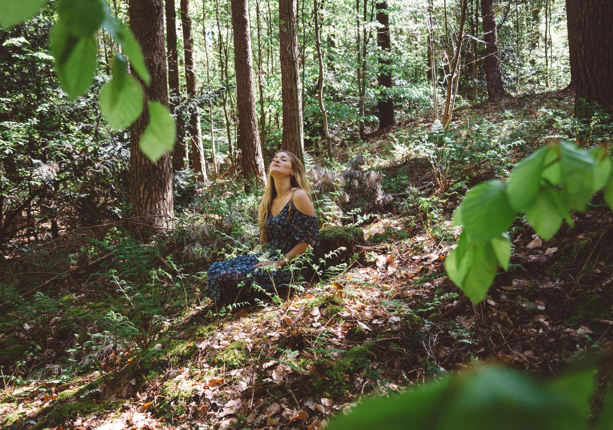 Das Waldbaden hat in Japan nicht nur Tradition, sondern gilt dort sogar als Medizin; Mit der heilenden Kraft der Natur sich selbst neu entdecken