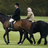 Als Pferdenärrin ist Queen Elizabeth selbstverständlich ihr ganzes Leben lang geritten. So wie hier noch 2003. Mit ihren 93 Jahren begnügt sich die Königin heutzutage allerdings mit den Anschauen von Pferderennen.