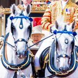 Queen Elizabeths Kutsche wird von zwei Apfelschimmeln gezogen.