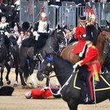 Tragische Szene am Rande: Ein Horseguard stürzte von seinem Pferd.